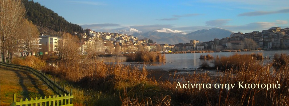 Kastoria Real Estate - House and Land - Properties in Kastoria
