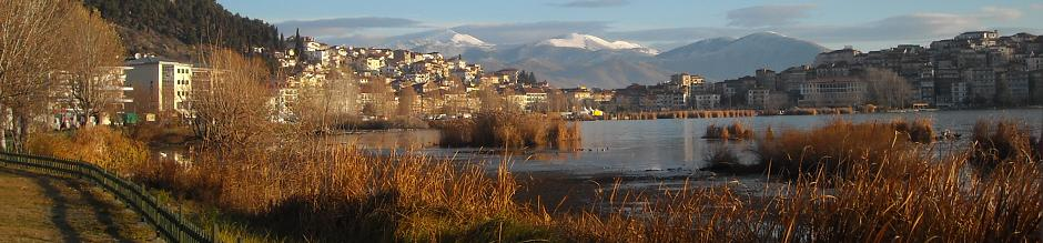 Real state Kastoria - House and Land